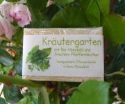 Kräutergarten Pfefferminze